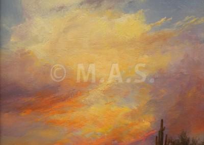 Desert Clouds