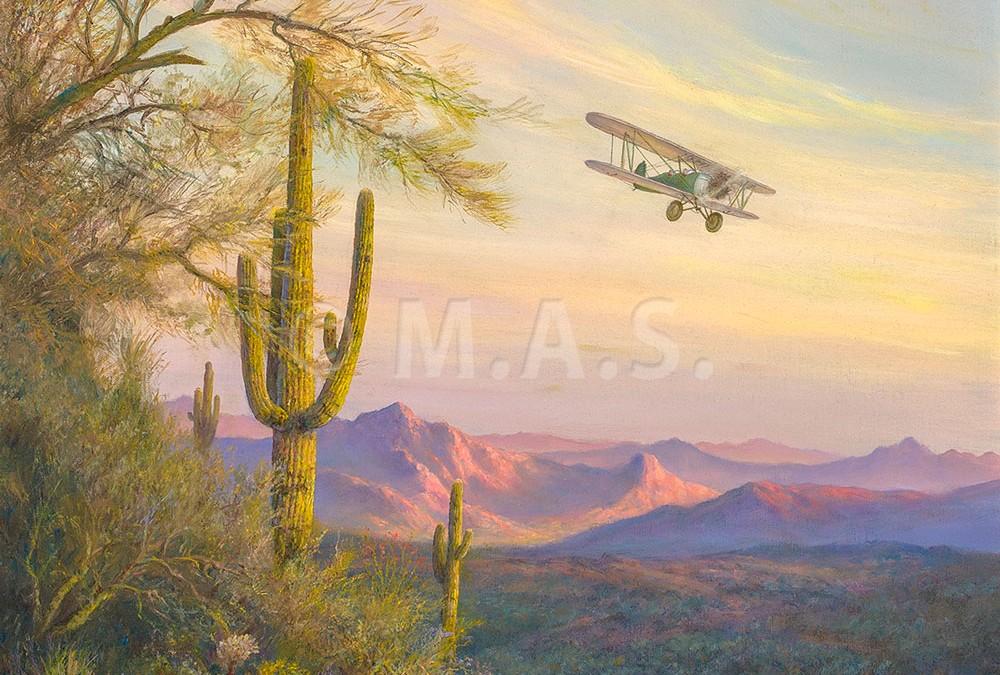Desert Flight